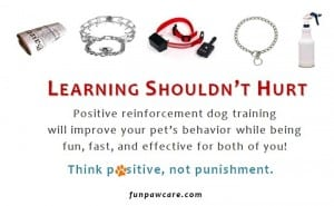 Dog Training Los Angeles CA - Learning Shouldn't Hurt for Webpage